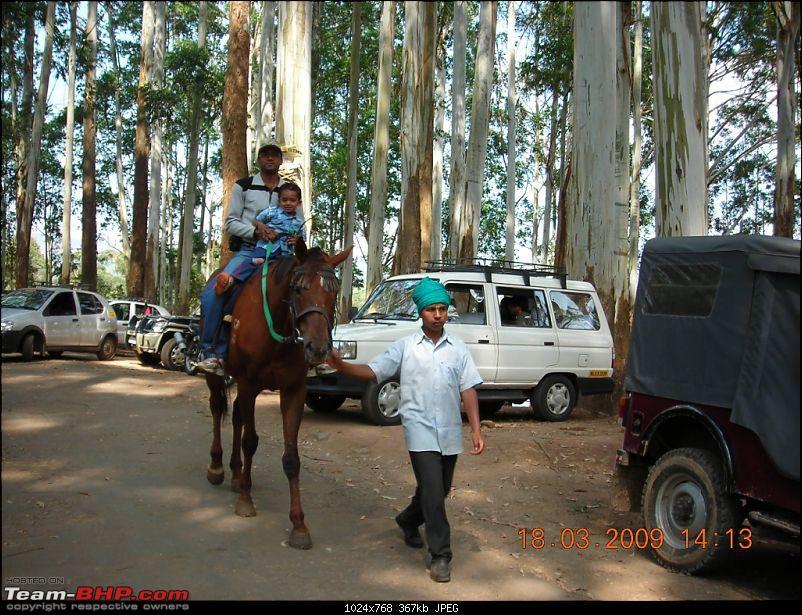 Palio: Pune-Mysore-Kodaikanal-Munnar-Banglore-Pune-horseride.jpg