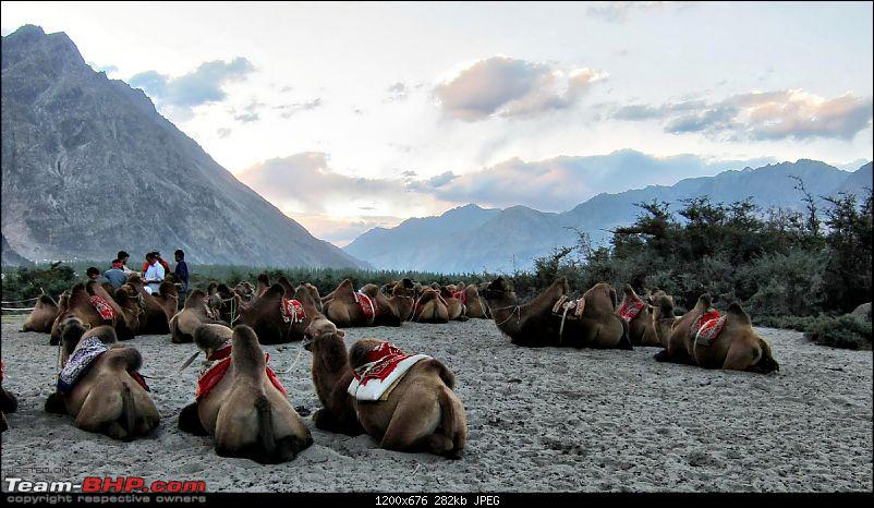 Dreams of Leh: A couple's motorcycle ride to the Himalayas - Part II-img_4925.jpg