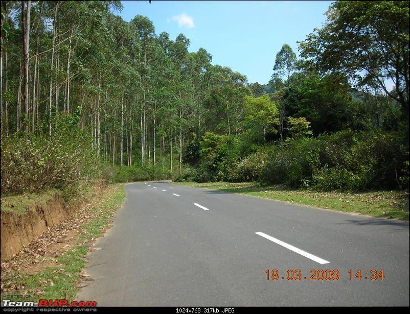 Palio: Pune-Mysore-Kodaikanal-Munnar-Banglore-Pune-munnarroad3.jpg