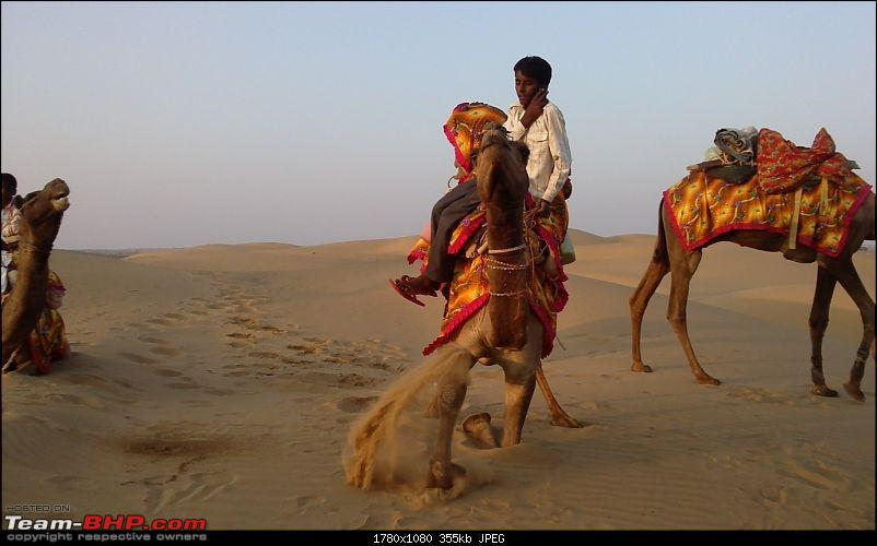 F1 @ Buddh + exploring Rajasthan: 9 states, 6000 kms, 3 weeks in a remapped Rapid-16.jpg