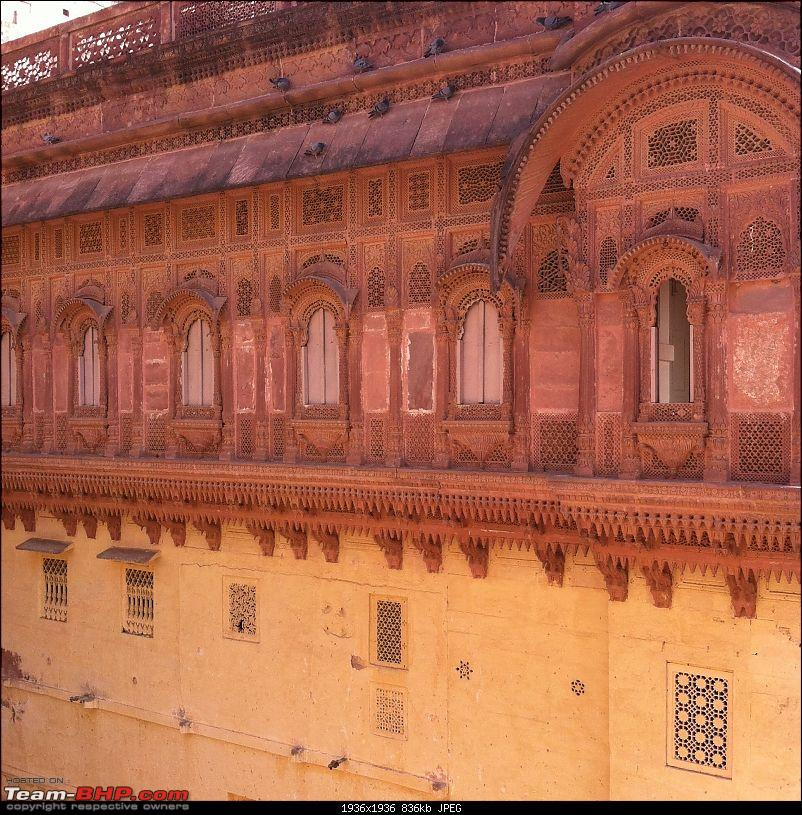 F1 @ Buddh + exploring Rajasthan: 9 states, 6000 kms, 3 weeks in a remapped Rapid-img_0671.jpg