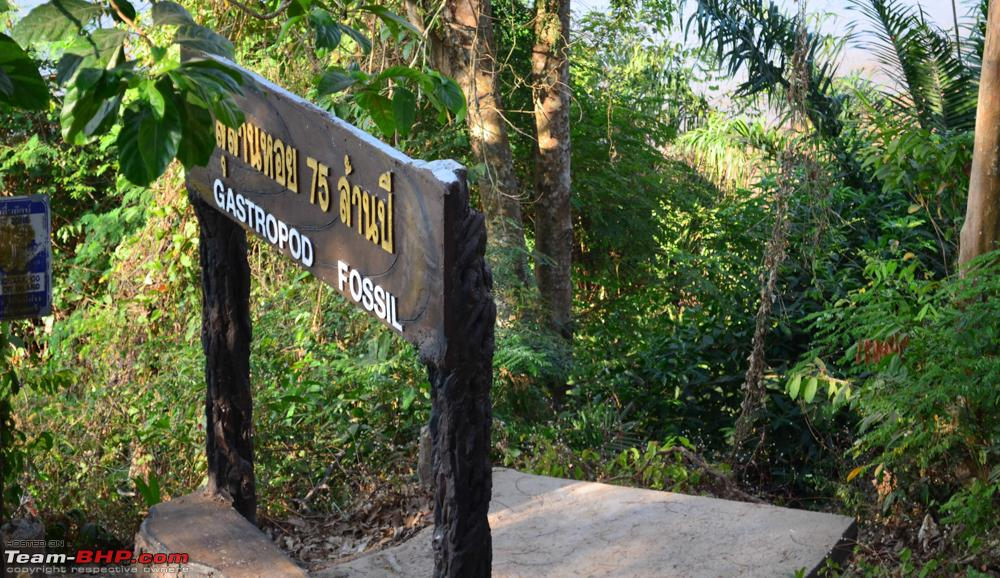 how to get to ko phi phi from krabi airport