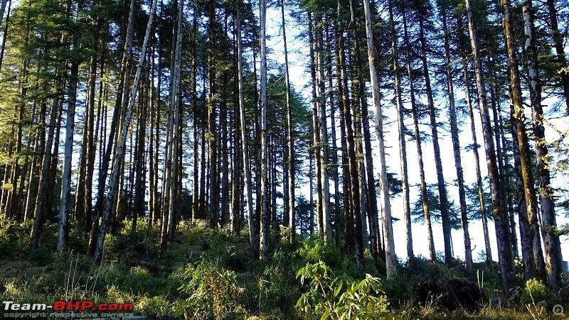 Uttarakhand: Kanatal, Hamlet in the Himalayan ranges-dscf4309.jpg