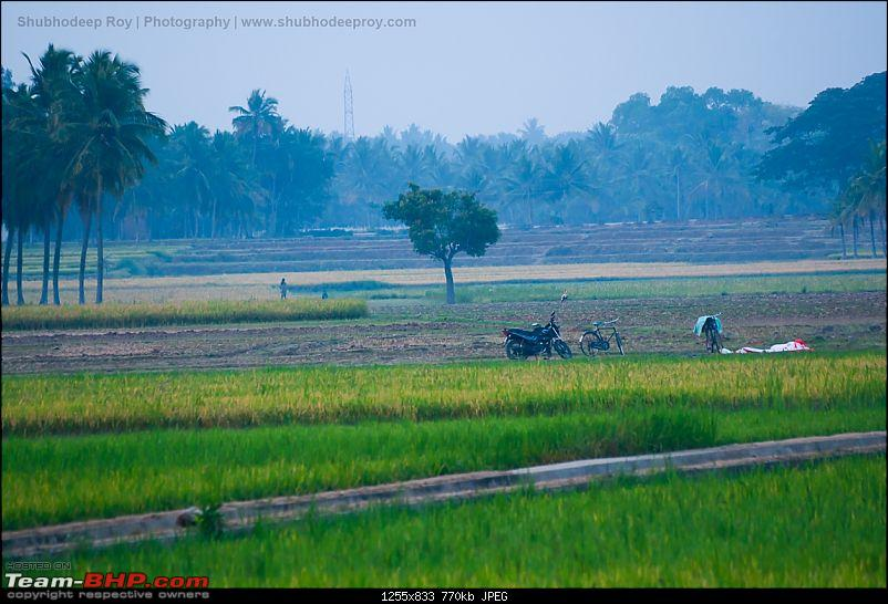 Early mornings of a remote South Indian village-dsc_0041.jpg