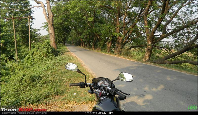 Memorable Motorcycle Trip: Panbari - Digaru - Pobitora (near Guwahati, Assam)-jrd1000.jpg
