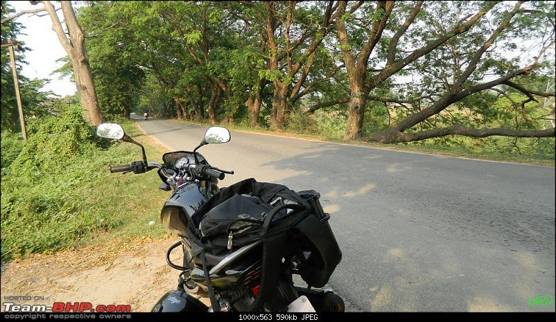 Memorable Motorcycle Trip: Panbari - Digaru - Pobitora (near Guwahati, Assam)-jrd1001.jpg