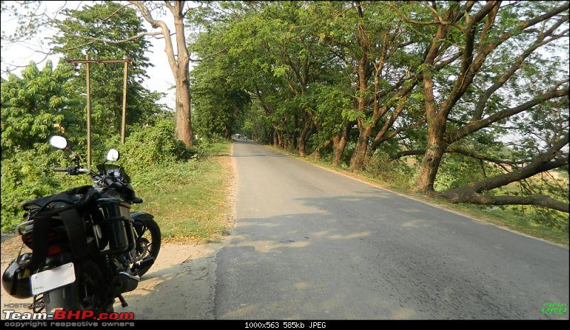 Memorable Motorcycle Trip: Panbari - Digaru - Pobitora (near Guwahati, Assam)-jrd1003.jpg