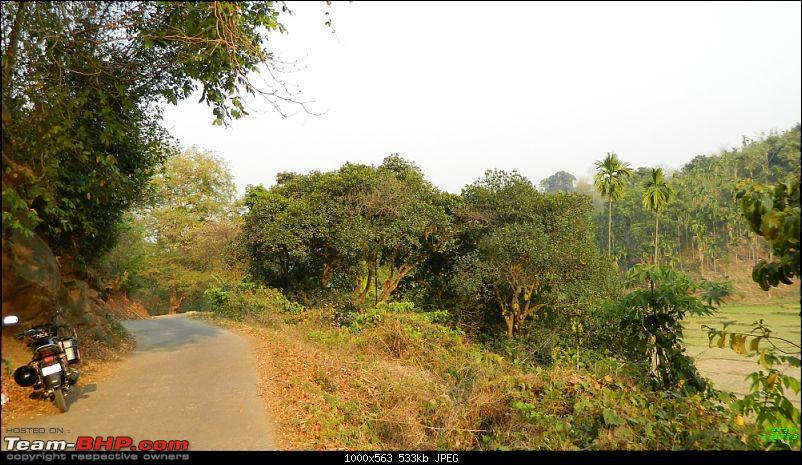 Memorable Motorcycle Trip: Panbari - Digaru - Pobitora (near Guwahati, Assam)-jrd1047.jpg