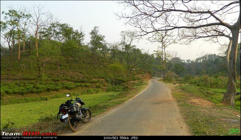 Memorable Motorcycle Trip: Panbari - Digaru - Pobitora (near Guwahati, Assam)-jrd1070.jpg