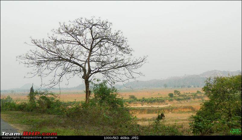 Memorable Motorcycle Trip: Panbari - Digaru - Pobitora (near Guwahati, Assam)-jrd1084.jpg
