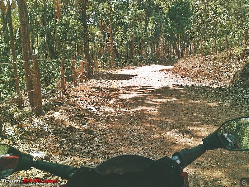 LoneWolfRides� - Still a Biker?-img_20140328_131914.jpg