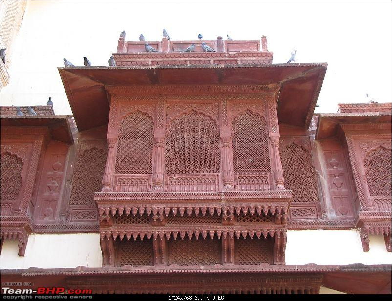 To the Land of the Royals - Rajasthan!-img_3416.jpg
