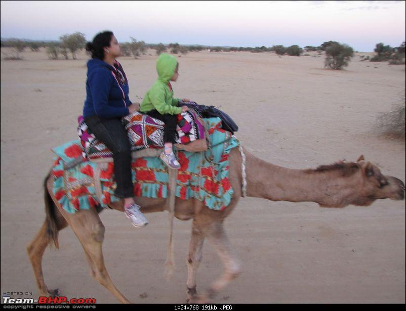 To the Land of the Royals - Rajasthan!-img_3440.jpg