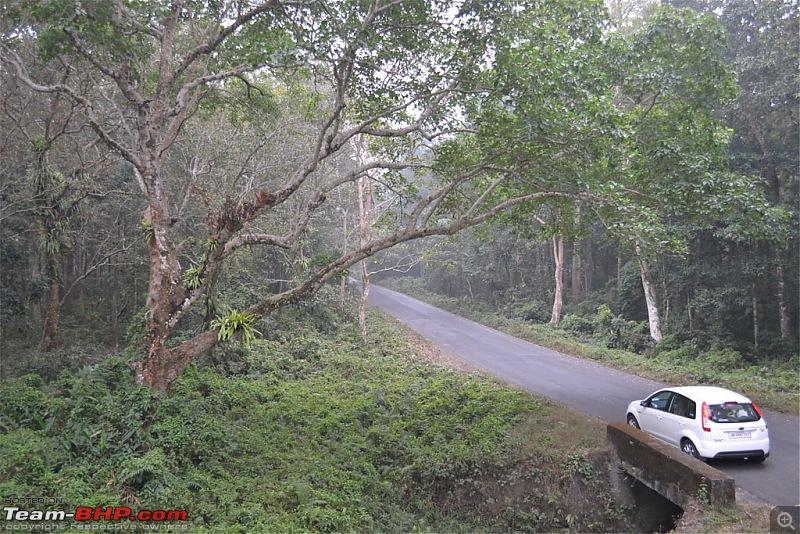 Dooars and Darjeeling from Asansol-dsc_0524.jpg