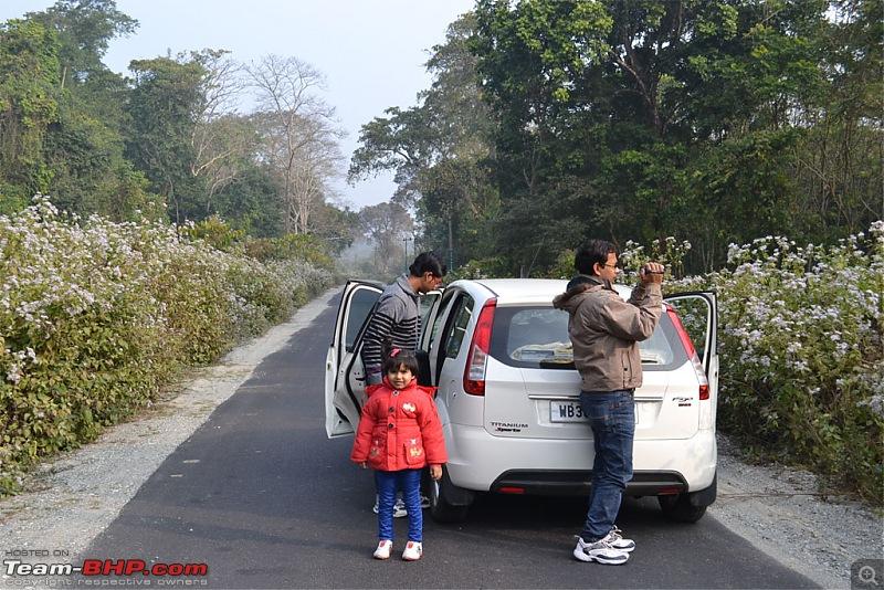 Dooars and Darjeeling from Asansol-dsc_0549.jpg