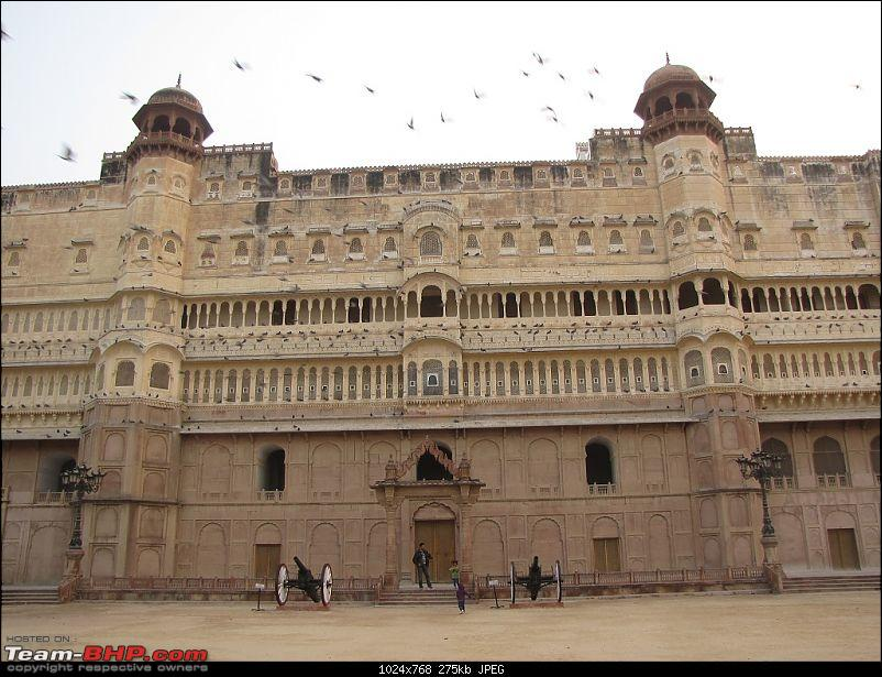 To the Land of the Royals - Rajasthan!-img_3586.jpg
