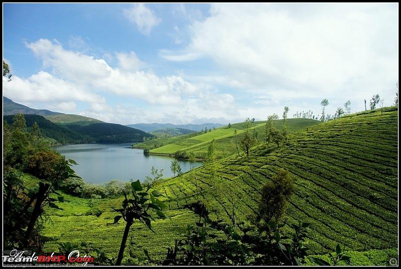 Dizzy Drive®: Quick Escape to the calm, serene & mesmerising Red Hills-dsc09393_edit-copy.jpg