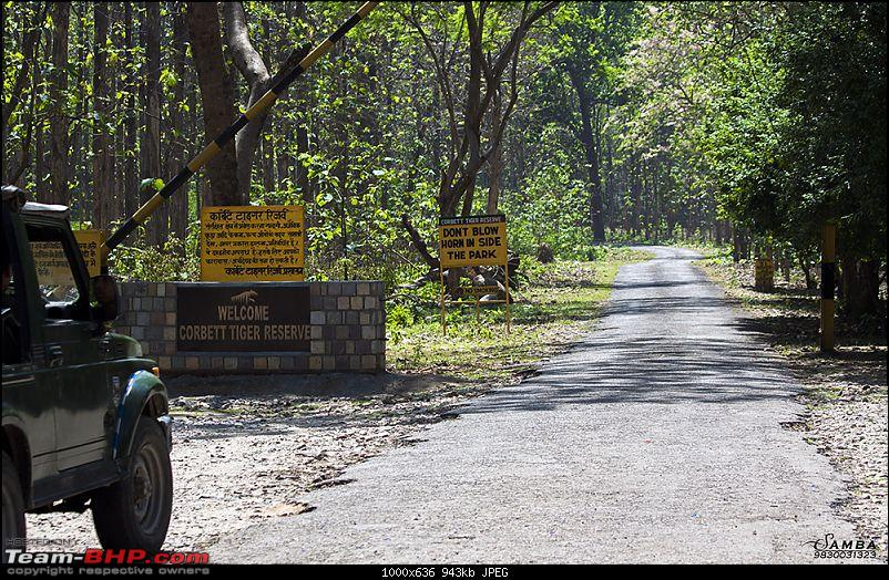 Corbett Tiger Reserve & Agra: Two consecutive weekends from Delhi!-img_2143.jpg