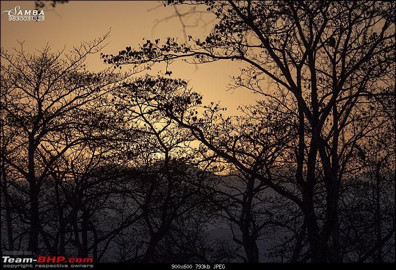 Corbett Tiger Reserve & Agra: Two consecutive weekends from Delhi!-img_2399.jpg