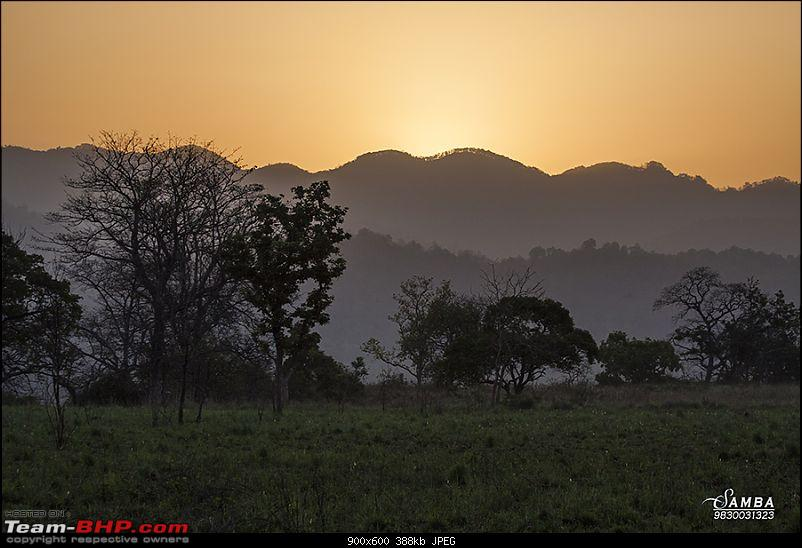 Corbett Tiger Reserve & Agra: Two consecutive weekends from Delhi!-img_2577.jpg