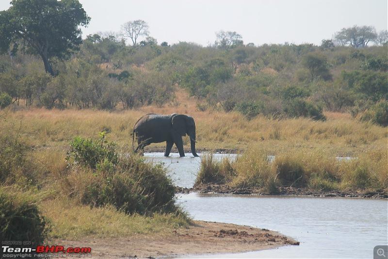 Splendid South Africa-kruger-lake-4.jpg