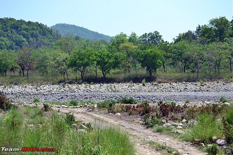 Kumaon roadtrip from Asansol (WB), via Jim Corbett National Park-dsc_0252.jpg