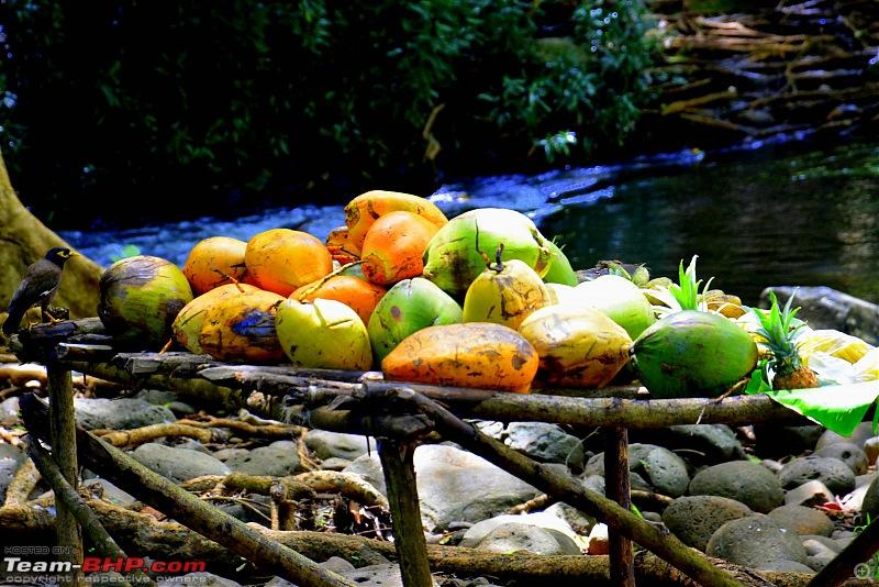 A Mauritius Holiday: Driving, fun, adventure & more-dsc_0235.jpg