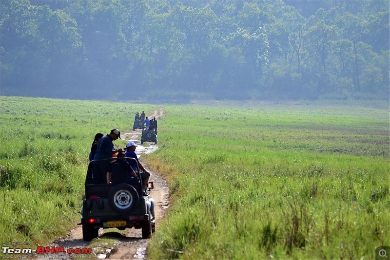 Kumaon roadtrip from Asansol (WB), via Jim Corbett National Park-dsc_0397.jpg