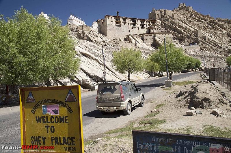 Marengo conquers the Marsimik La - The Ladakh episode-img_1500.jpg