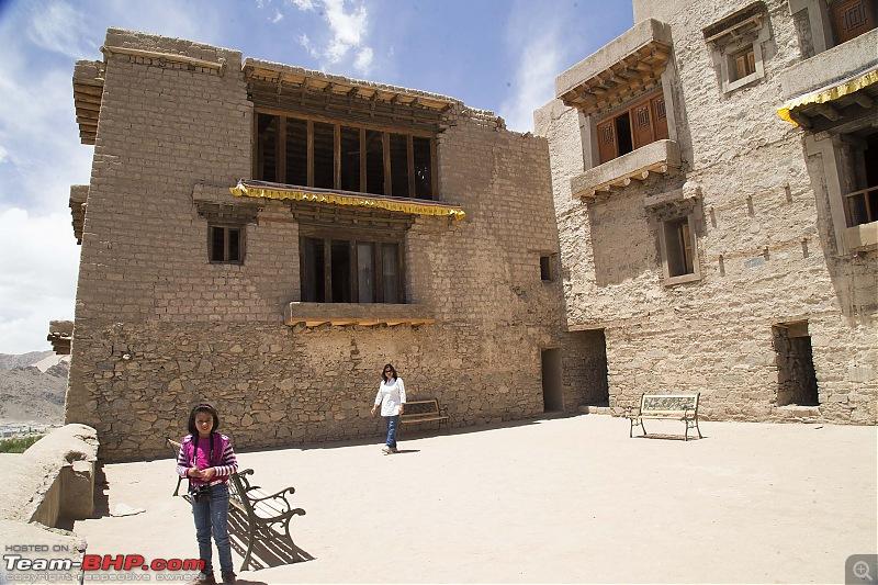 Marengo conquers the Marsimik La - The Ladakh episode-img_1138.jpg