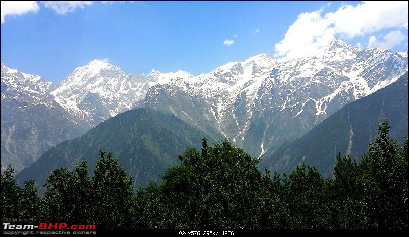 Sojourn to the last Indian village : Chitkul-20140615_123505.jpg