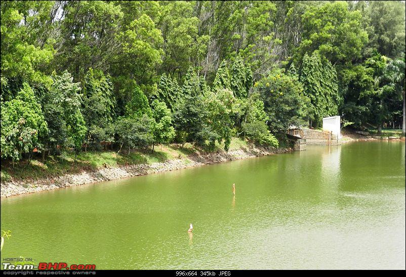 Another weekend, yet another Hill Station - Yelagiri-dscn8607.jpg