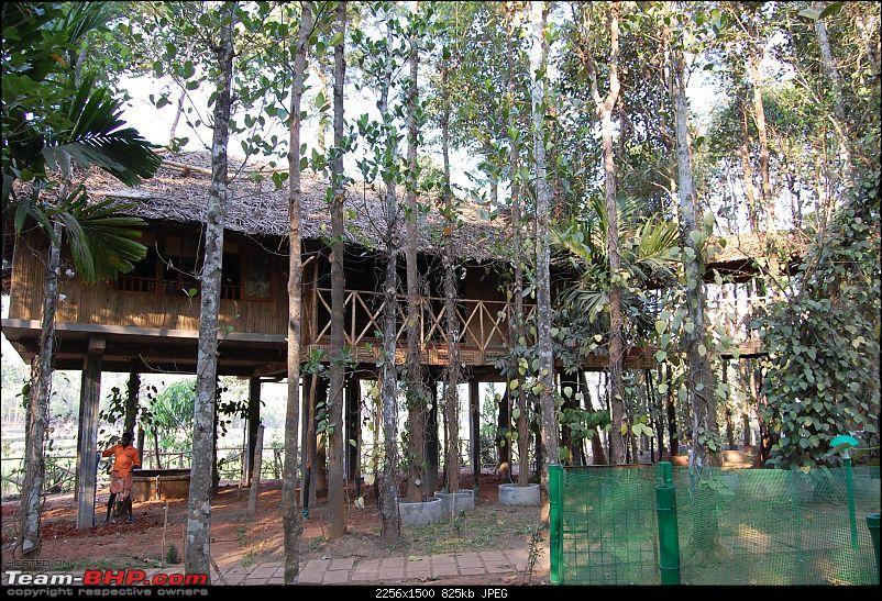Drive from Bangalore to Kuruva Island Wayanad-dsc_0063.jpg