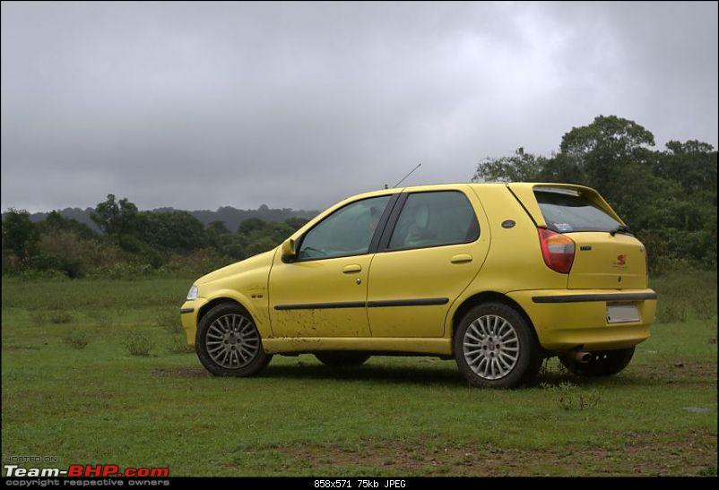 ...in search of rains : Bangalore to Agumbe-img_4615.jpg