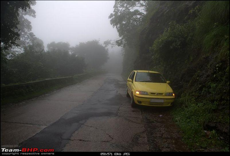 ...in search of rains : Bangalore to Agumbe-img_4634.jpg