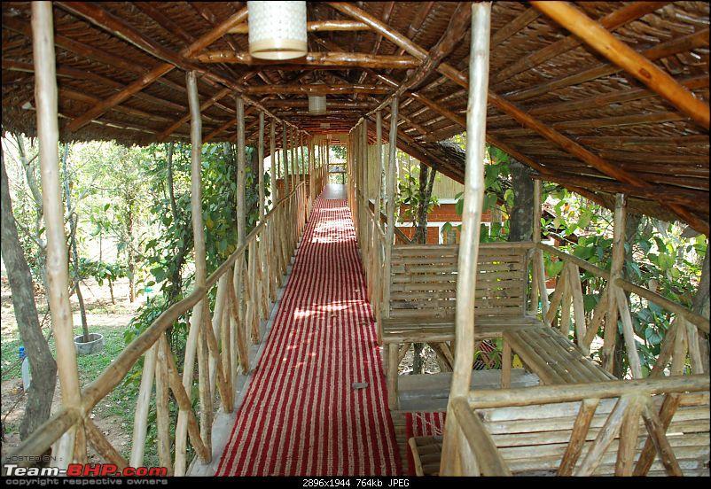 Drive from Bangalore to Kuruva Island Wayanad-dsc_0011.jpg