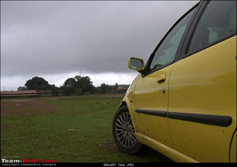 ...in search of rains : Bangalore to Agumbe-img_4598.jpg