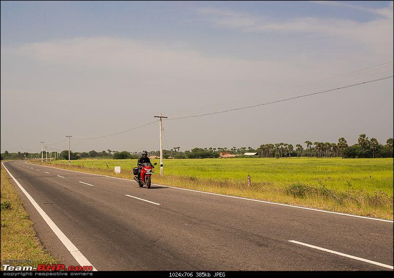 South India West-Coast Ride. And some more...-20131226dsc_1490.jpg