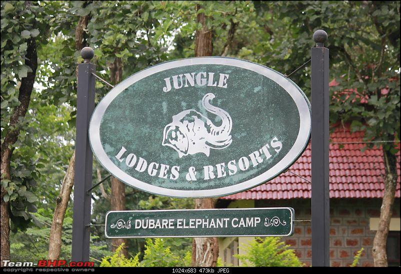 Meeting the Elephants - Family overnighter at Dubare Elephant Camp-jlr.jpg