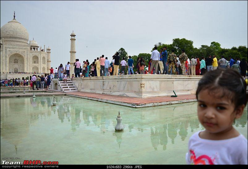 A day to appreciate the beauty of Taj Mahal, Agra-taj-5.jpg