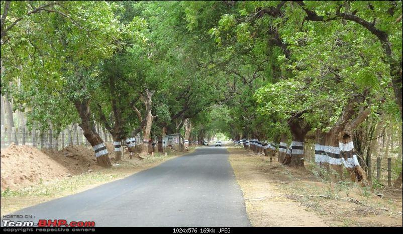 Wilderness on 2 wheels! 4 day Tristate ride (including Athirapally waterfalls)-amaravathi.jpg