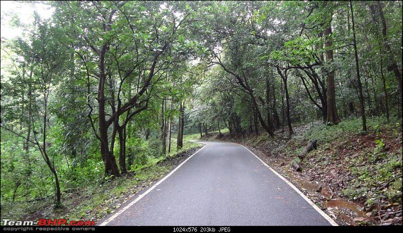 Wilderness on 2 wheels! 4 day Tristate ride (including Athirapally waterfalls)-forest1.jpg