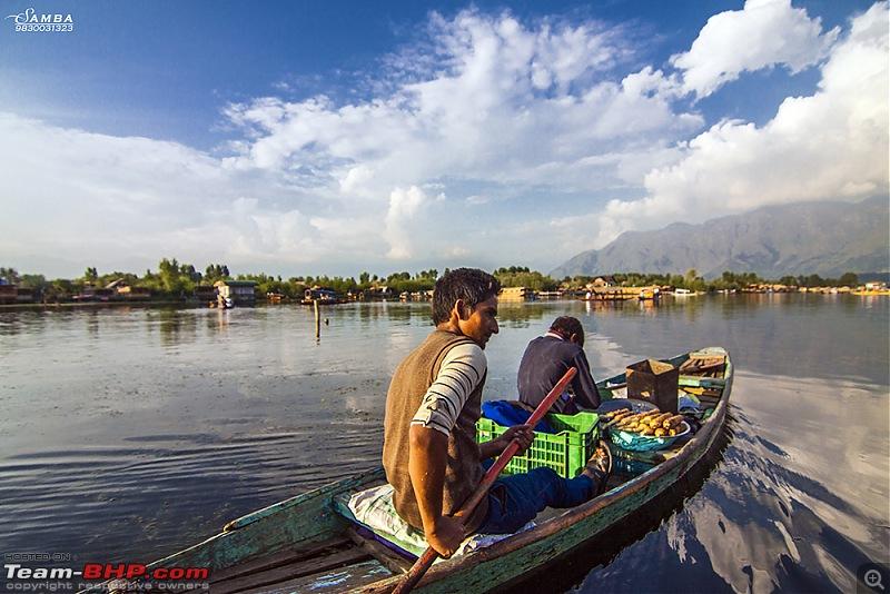 Kashmir - A Traveller's Paradise!-img_3829.jpg