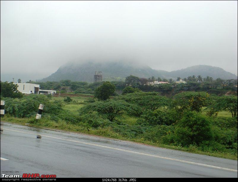 'BEAT'-ing the Drizzle at Munnar and Palakkad-dsc00667.jpg