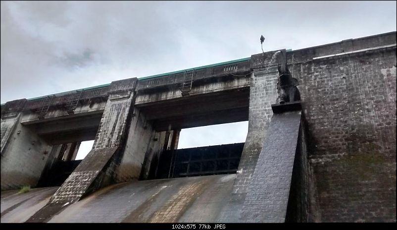 'BEAT'-ing the Drizzle at Munnar and Palakkad-img_20140828_154543274_hdr.jpg