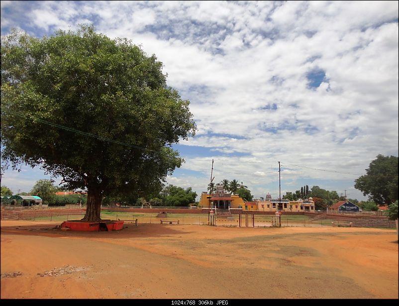 Enchanting Tamil Nadu in 72 hours-dsc02928.jpg