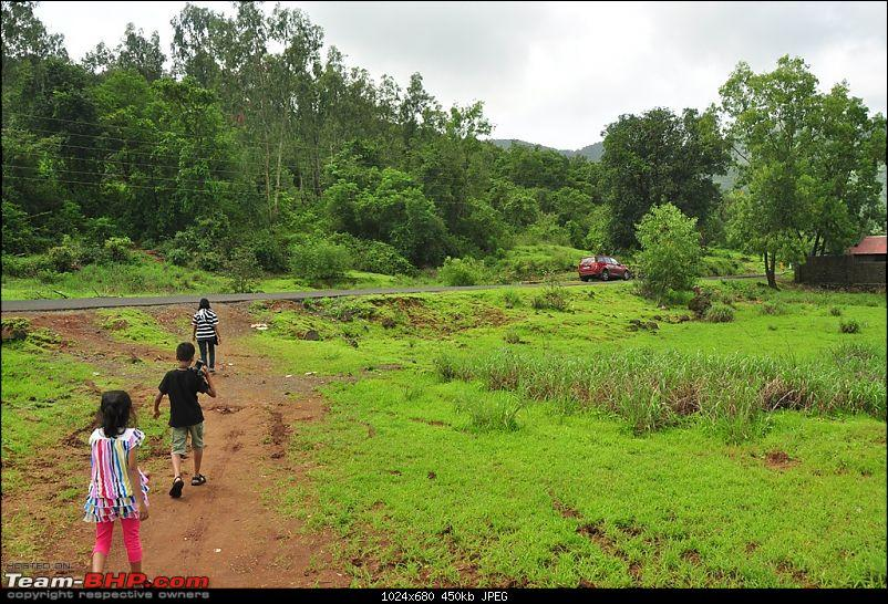 Revisiting the Greenery - Monsoon drives, 2014-dsc_1524.jpg