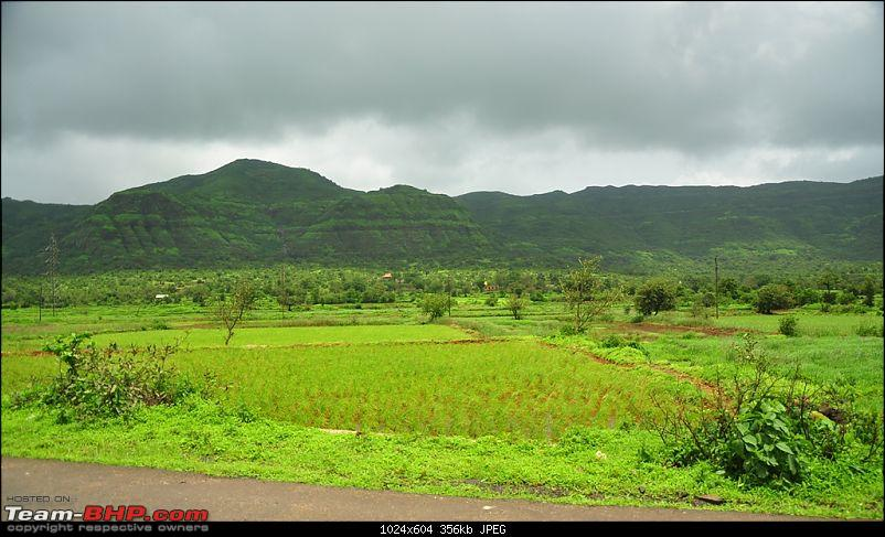 Revisiting the Greenery - Monsoon drives, 2014-dsc_1572.jpg