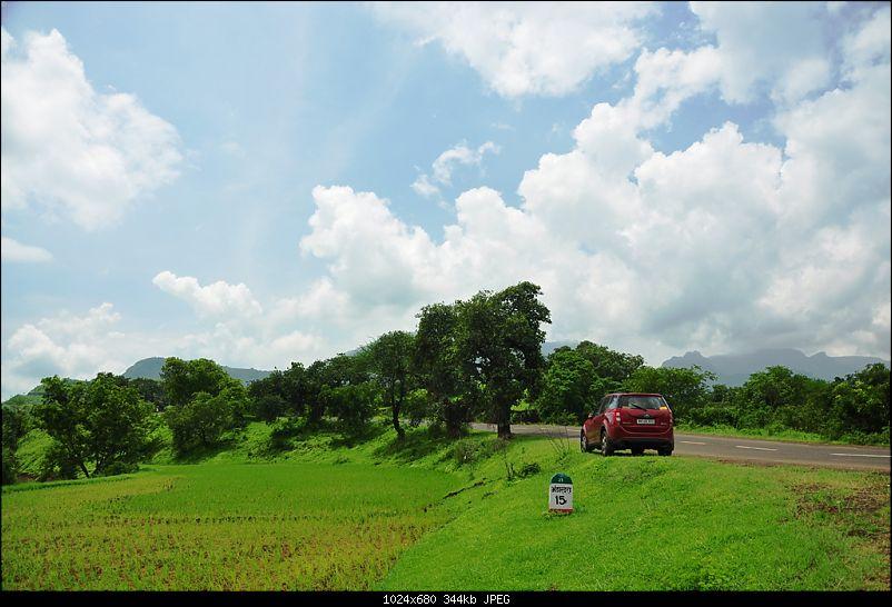 Revisiting the Greenery - Monsoon drives, 2014-dsc_1720.jpg