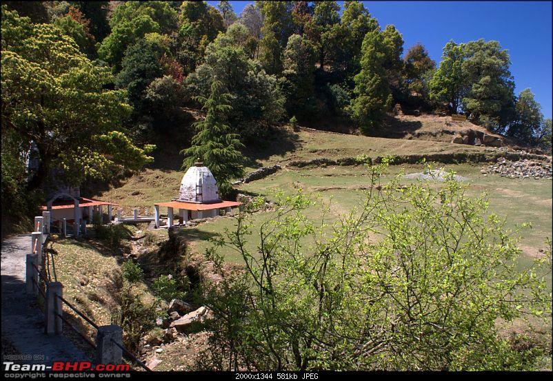 Binsar, the Mighty Himalayas & Life-dsc05828.jpg